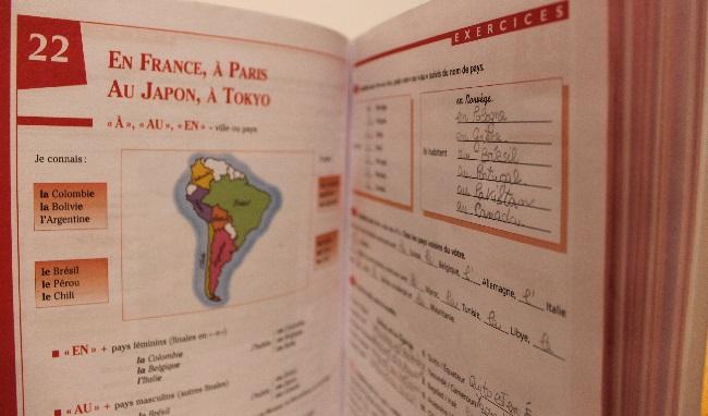 Grammaire progressive du français workbook